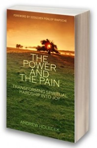 The Power and The Pain Book by Andrew Holecek